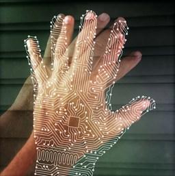 Flexible tactile sensor lets robots feel